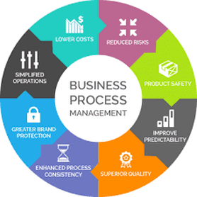 Business Process Management – An Approach to Deploy the Web-Based Software